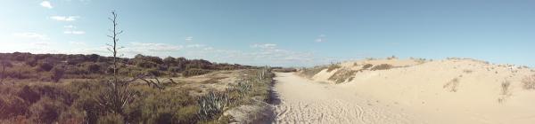 Derrière les dunes...
